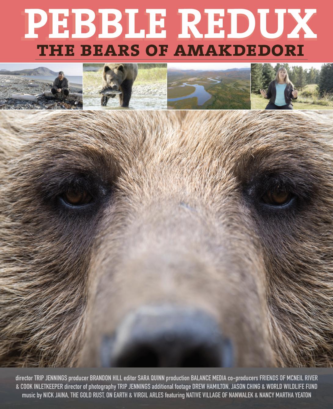 Pebble Redux: The Bears of Amakdedori | Full Film Now Online