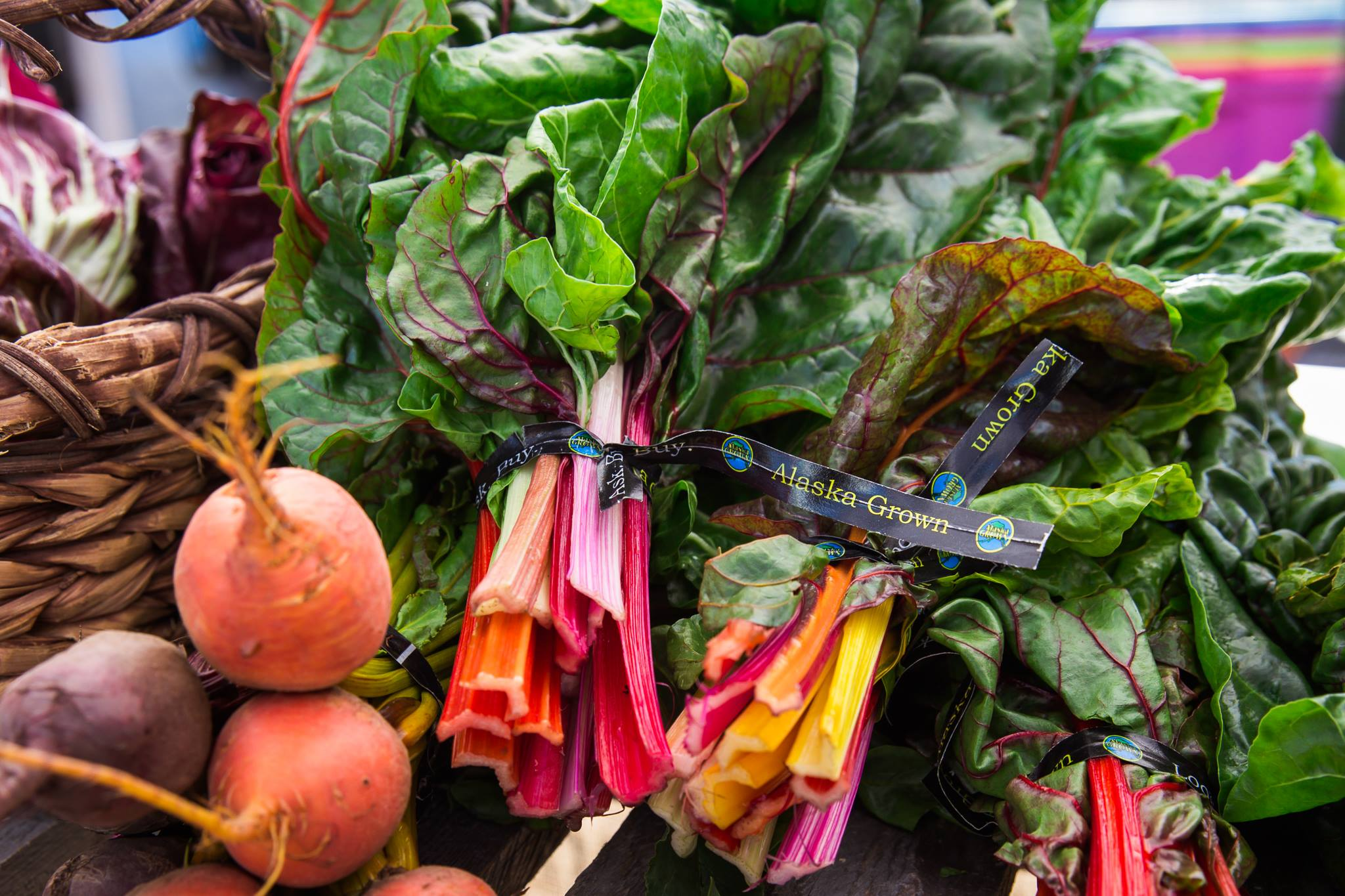 People, Planet and Profits: Pillars for Building Sustainable & Equitable Food Systems