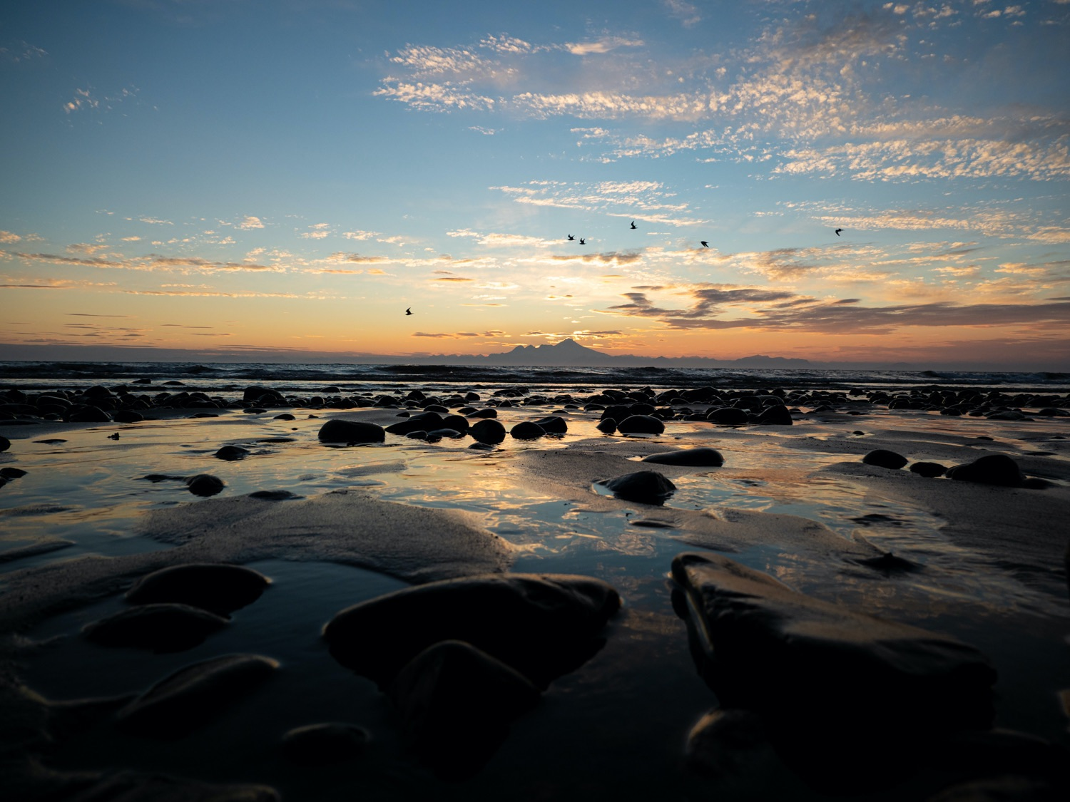Stand to Protect Lower Cook Inlet
